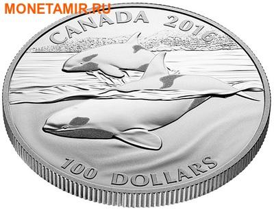 Канада 100 долларов 2016.Кит.Арт.60 (фото, вид 1)