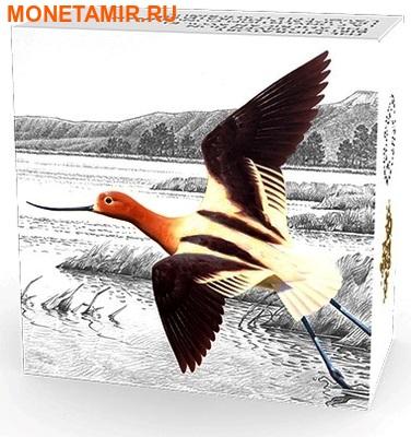 Канада 20 долларов 2016.Птица Американская Шилоклювка.Арт.60 (фото, вид 3)
