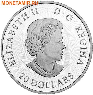 Канада 20 долларов 2016.Кленовый лист - Лабиринт.Арт.60 (фото, вид 2)