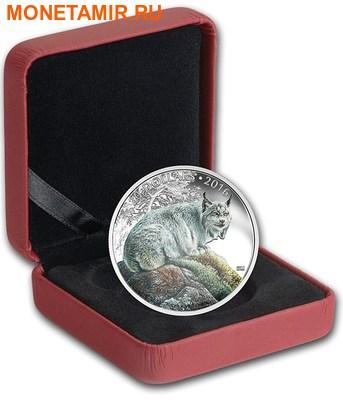Канада 20 долларов 2016.Рысь серия Величественные животные.Арт.60 (фото, вид 2)