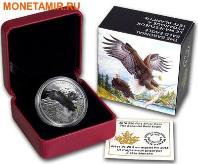 Канада 20 долларов 2016.Белоголовый орел серия Величественные животные.Арт.60 (фото, вид 2)