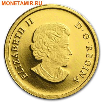 Канада 5 долларов 2014.Белоголовый орлан.Арт.60 (фото, вид 1)