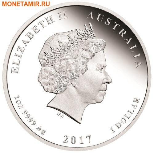 Австралия 1 доллар 2017.Год Петуха – Лунный календарь.Арт.60 (фото, вид 1)