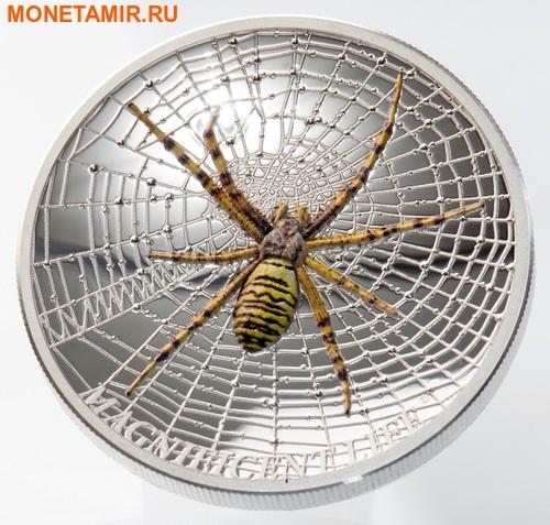 Острова Кука 5 долларов 2016 Паук-оса Великолепная жизнь (Cook Isl 5$ 2016 Magnificent Life Wasp Spider 1Oz 999 Silver).Арт.My/60 (фото, вид 1)