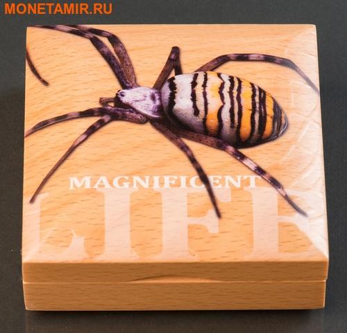 Острова Кука 5 долларов 2016 Паук-оса Великолепная жизнь (Cook Isl 5$ 2016 Magnificent Life Wasp Spider 1Oz 999 Silver).Арт.My/60 (фото, вид 4)