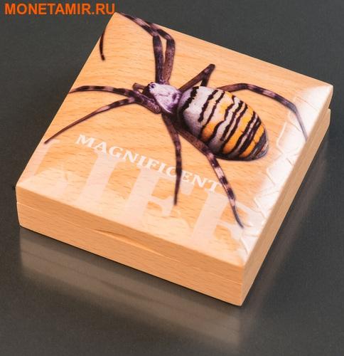 Острова Кука 5 долларов 2016 Паук-оса Великолепная жизнь (Cook Isl 5$ 2016 Magnificent Life Wasp Spider 1Oz 999 Silver).Арт.My/60 (фото, вид 5)
