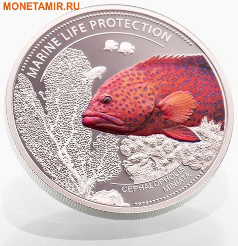 Палау 1 доллар 2016.Рыба Красный коралловый групер (Cephalopholis miniata) – Защита морской жизни.Арт.60 (фото, вид 1)