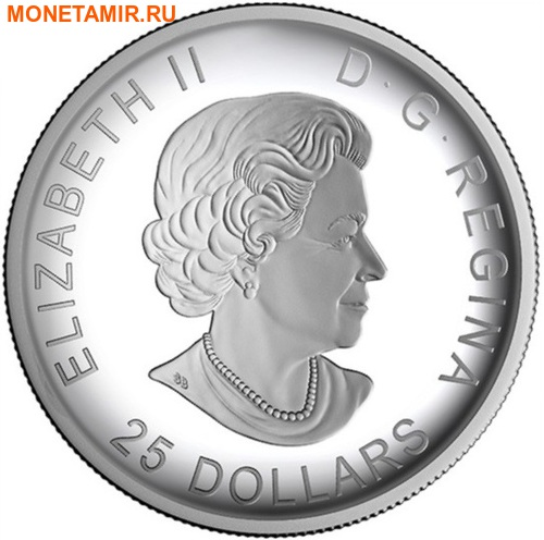 Канада 25 долларов 2016.Канада из Космоса (Выпуклая форма).Арт.60 (фото, вид 3)