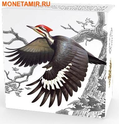 Канада 20 долларов 2016.Птица Хохлатая желна (Дятел).Арт.60 (фото, вид 4)