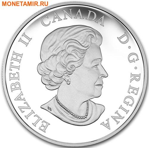 Канада 20 долларов 2016.Бизон серия Величественные животные.Арт.60 (фото, вид 1)