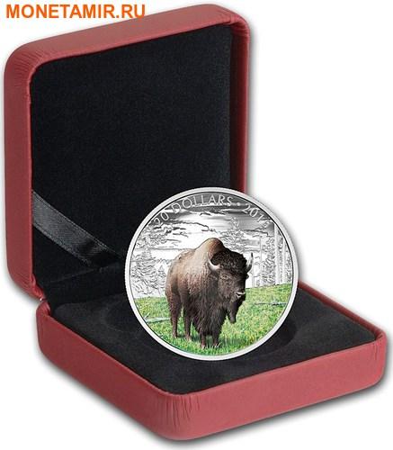 Канада 20 долларов 2016.Бизон серия Величественные животные.Арт.60 (фото, вид 2)