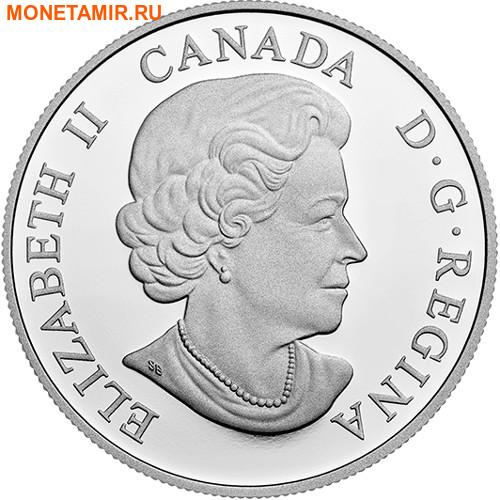 Канада 20 долларов 2017.Медведь серия Величественные животные.Арт.60 (фото, вид 1)