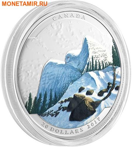 Канада 20 долларов 2017.Сова серия Иллюзия ландшафта.Арт.60 (фото, вид 1)