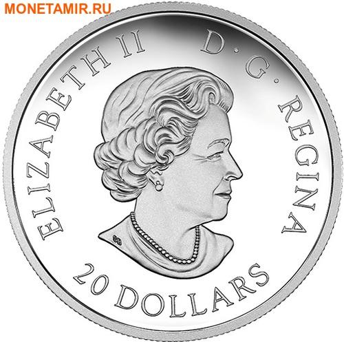 Канада 20 долларов 2017.Подводная жизнь 3D капля.Арт.60 (фото, вид 2)