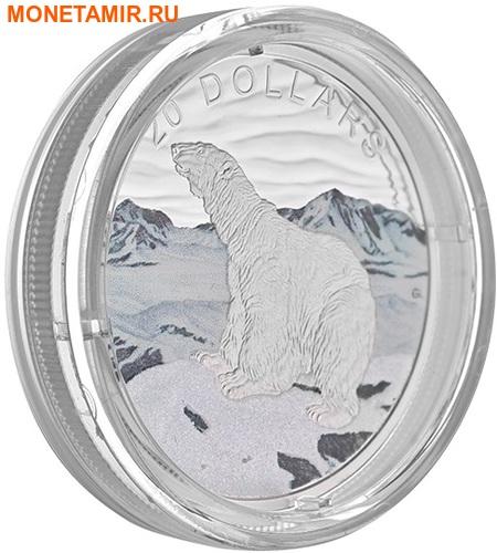 Канада 20 долларов 2017 Полярный медведь – Сияющий север (Canada 20$ 2017 Glistening North The Polar Bear).Арт.000529352988/60 (фото, вид 1)