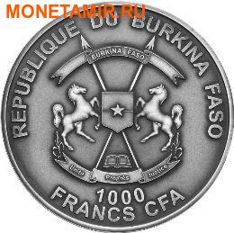 Буркина Фасо 1000 франков 2016 Аммонит – Мир эволюции (Ammonite Fossil).Арт.60 (фото, вид 1)