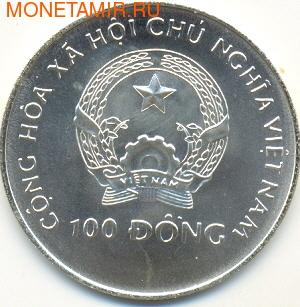 Чемпионат мира 1994. Арт: 0000522F0333 (фото, вид 1)
