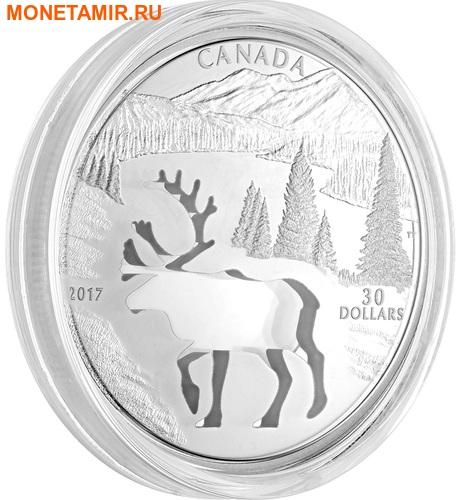 Канада 30 долларов 2017.Олень Карибу - Силуэт.Арт.60 (фото, вид 3)