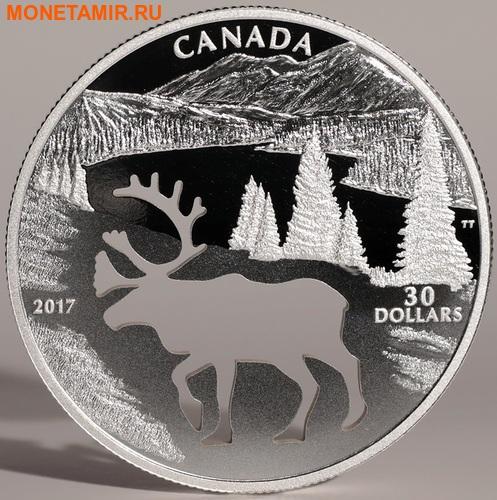 Канада 30 долларов 2017.Олень Карибу - Силуэт.Арт.60 (фото, вид 4)