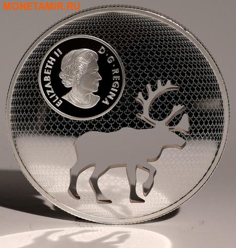 Канада 30 долларов 2017.Олень Карибу - Силуэт.Арт.60 (фото, вид 5)