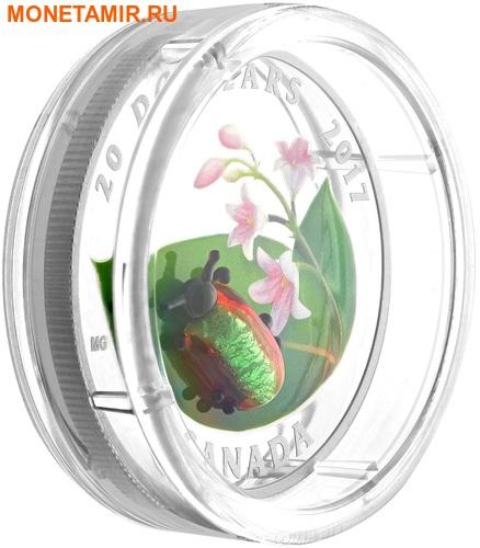 Канада 20 долларов 2017 Золотистый жук (Dogbane Beetle) Муранское стекло.Арт.60 (фото, вид 2)