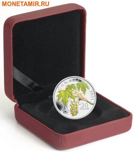 Канада 20 долларов 2011 Клен Капля Дождя (Canada 20C$ 2011 Maple Raindrop Swarovski Silver Proof).Арт.000303635124/67 (фото, вид 2)