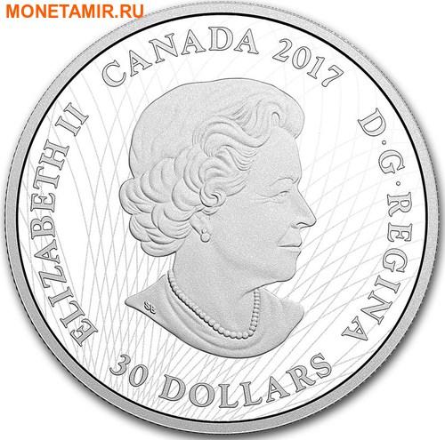 Канада 30 долларов 2017 Рысь в лунном свете.Арт.000753053944/60 (фото, вид 1)