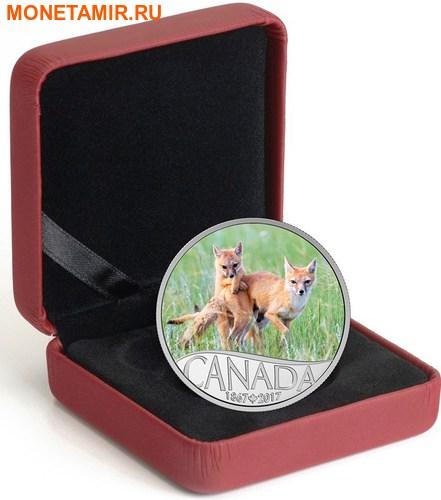 Канада 10 долларов 2017 Лиса с детенышем – 150 лет Празднования Канады.Арт.000196553933/60 (фото, вид 2)