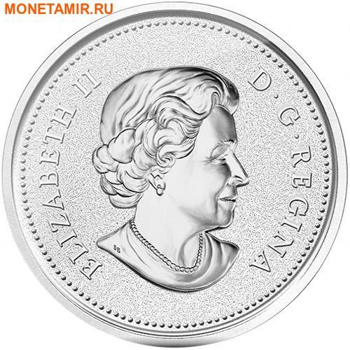 Канада 50 долларов 2014 Плывущий Бобр.Арт.003288845950/60 (фото, вид 1)