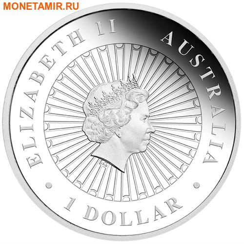 Австралия 1 доллар 2014 Сова Опал.Арт.000415350480/60 (фото, вид 1)