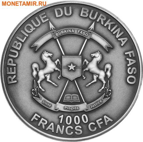 Буркина Фасо 1000 франков 2016 Аммонит черный – Мир эволюции (Burkina Faso 1000 francs 2016 Ammonite black World of Evolution with real fossil).Арт.60 (фото, вид 1)