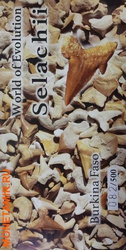 Буркина Фасо 1000 франков 2016 Зуб акулы – Мир эволюции (Selachii).Арт.60 (фото, вид 5)