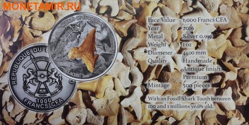 Буркина Фасо 1000 франков 2016 Зуб акулы – Мир эволюции (Selachii).Арт.60 (фото, вид 6)