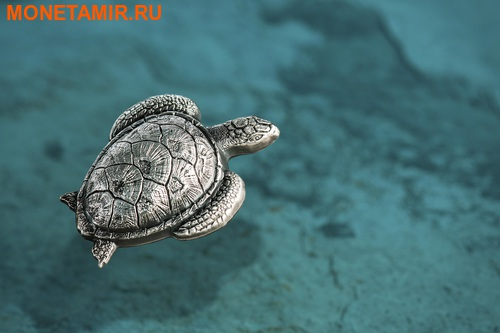 Палау 10 долларов 2017 Морская черепаха.Арт.60 (фото, вид 2)