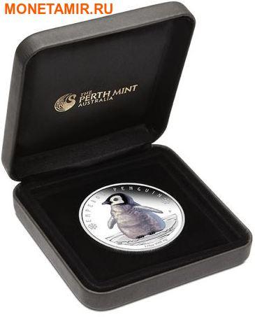 Тувалу 50 центов 2017 Детеныш Императорского пингвина.Арт.60 (фото, вид 2)