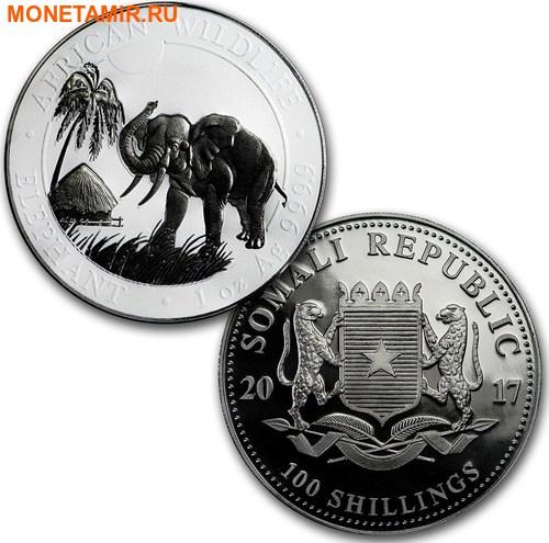 Сомали 2х100 шиллингов 2017 Слон Черный и Белый (Рутений).Арт.000773854397/60 (фото, вид 2)
