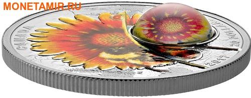 Канада 20 долларов 2017 Шмель (Пчела) цветок Дейзи серия Красота под солнцем (3D капля).Арт.60 (фото, вид 1)