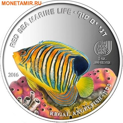 Палау 8х5 долларов 2016 Морская жизнь Красного моря Red Sea Marine Life (набор 8 монет).Арт.60 (фото, вид 6)