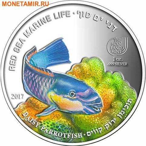 Палау 8х5 долларов 2016 Морская жизнь Красного моря Red Sea Marine Life (набор 8 монет).Арт.60 (фото, вид 8)