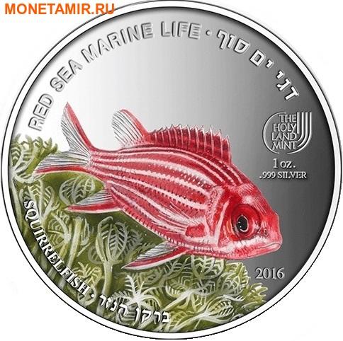 Палау 8х5 долларов 2016 Морская жизнь Красного моря Red Sea Marine Life (набор 8 монет).Арт.60 (фото, вид 10)