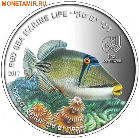 Палау 8х5 долларов 2016 Морская жизнь Красного моря Red Sea Marine Life (набор 8 монет).Арт.60 (фото, вид 12)