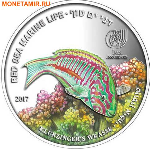 Палау 8х5 долларов 2016 Морская жизнь Красного моря Red Sea Marine Life (набор 8 монет).Арт.60 (фото, вид 14)