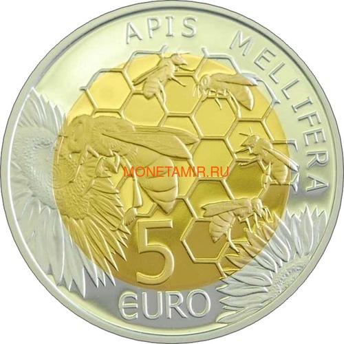 Люксембург 5 евро 2013 Пчела Флора и фауна Люксембурга (Luxemburg 5 Euro 2013 Bee).Арт.000347748961/60 (фото, вид 1)