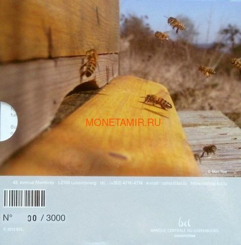 Люксембург 5 евро 2013 Пчела Флора и фауна Люксембурга (Luxemburg 5 Euro 2013 Bee).Арт.000347748961/60 (фото, вид 3)