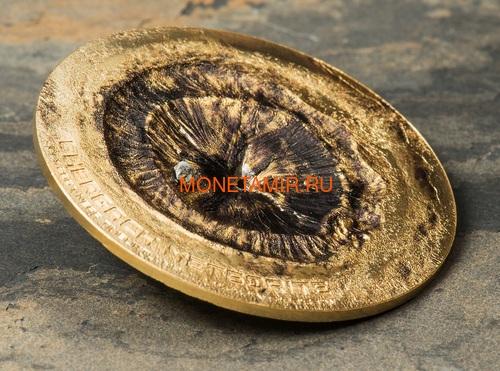 Острова Кука 2 доллара 2017 Метеорит Chergach (Cook Isl 2$ 2017 Chergach Meteorite 1/2Oz.999Silv).Арт.60 (фото, вид 1)