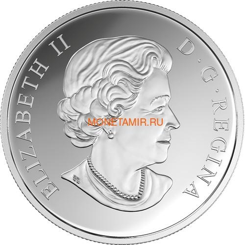 Канада 20 долларов 2017 Бабочка серия Насекомые из Драгоценных Камней (Canada 20$ 2017 BUTTERFLY Bejeweled Bugs Silver Coin).Арт.60 (фото, вид 3)