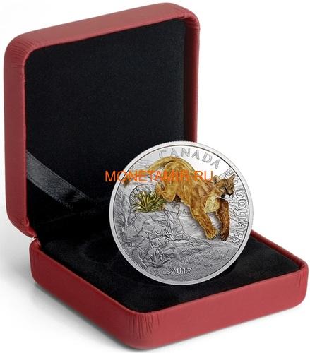 Канада 20 долларов 2017 Пума 3D (Canada 20$ 2017 Puma 3D).Арт.60 (фото, вид 4)