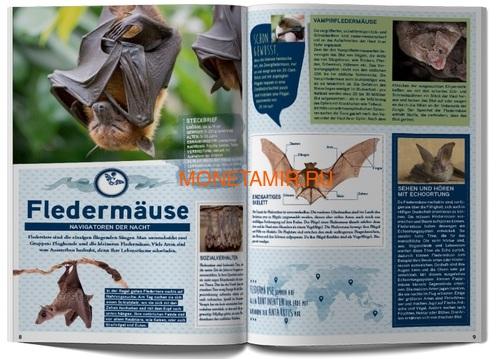 Австрия 3 евро 2017 Зимородок (Colourful Creatures The Kingfisher Austria 3 euro 2017).Арт.60 (фото, вид 5)