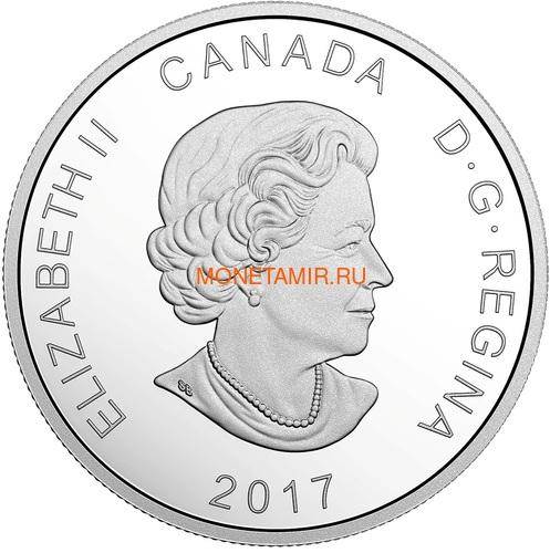 Канада 20 долларов 2017 Арктический волк – Сияющий север (Canada 20$ 2017 Glistening North The Arctic Wolf).Арт.000516254474/60 (фото, вид 2)