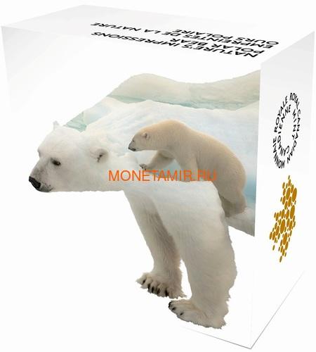Канада 20 долларов 2017 Полярный медведь (Canada 20$ 2017 Paw Prints on the Edge Polar Bear).Арт.000463154463/60 (фото, вид 5)